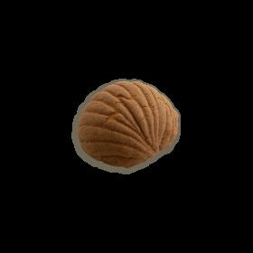Chocolate Concha